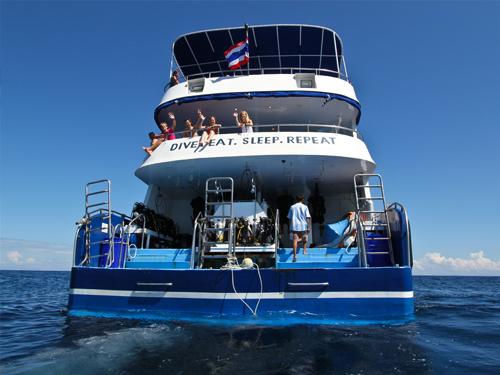 manta-queen6 Tauchsafari Khao Lak Similan Islands Koh Bon Koh Tachai Richelieu Rock Tauchen Thailand